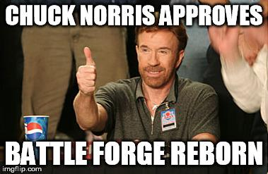 Chuck Norris Approves.jpg