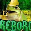 bobfrog