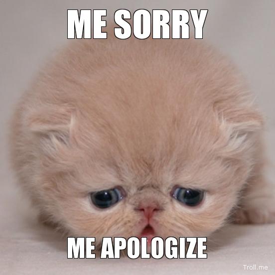 me-sorry-me-apologize.jpg
