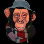 The Chimpy Man
